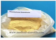 China Muscle Growth Steroid Hormone Powder Parabolan 10161-33-8 Trenbolone Enanthate factory