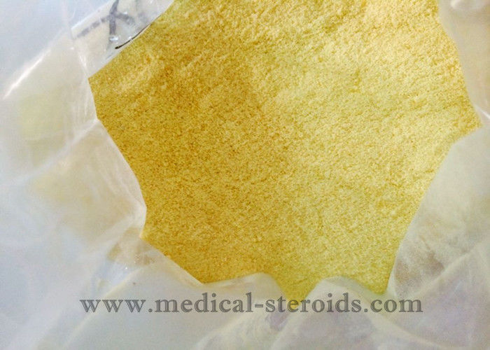 Yellow Powder Legal Parabolan Trenbolone Steroids For Muscle Gaining