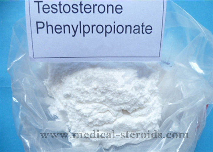 Testosterone Phenylpropionate Natural Male Enhancement Powder / Male Performance Supplements White Powder