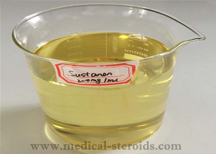Testosterone Sustanon 250mg / ml Test Sus 250 Anabolic Steroids