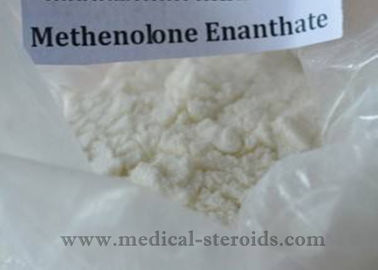 China Methenolone Enanthate Muscle Enhancing Steroids , Fat Burning Hormones 99% Assay distributor