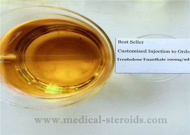Anabolic Trenbolone Steroids Trenbolone Enanthate / Tren E For Bodybuilding