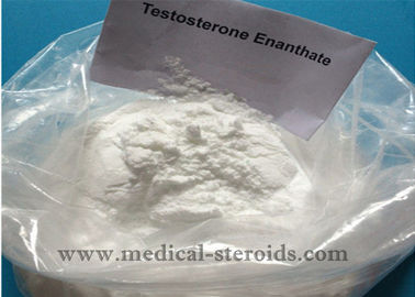 China High Purity Bodybuilding Testosterone Anabolic Steroid Testosterone Enanthate CAS 315-37-7 distributor